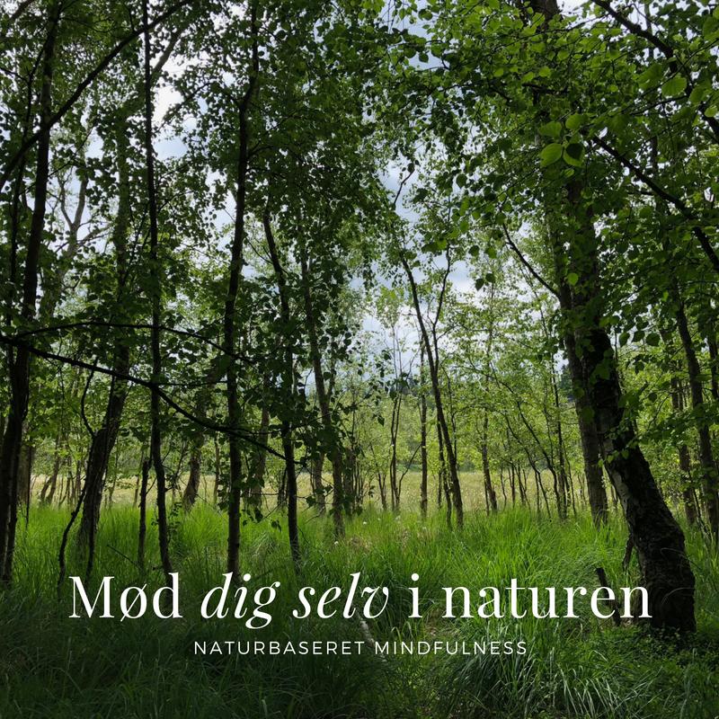 Naturbaseret mindfulness