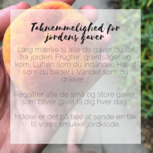Taknemmelighed for jordens gaver