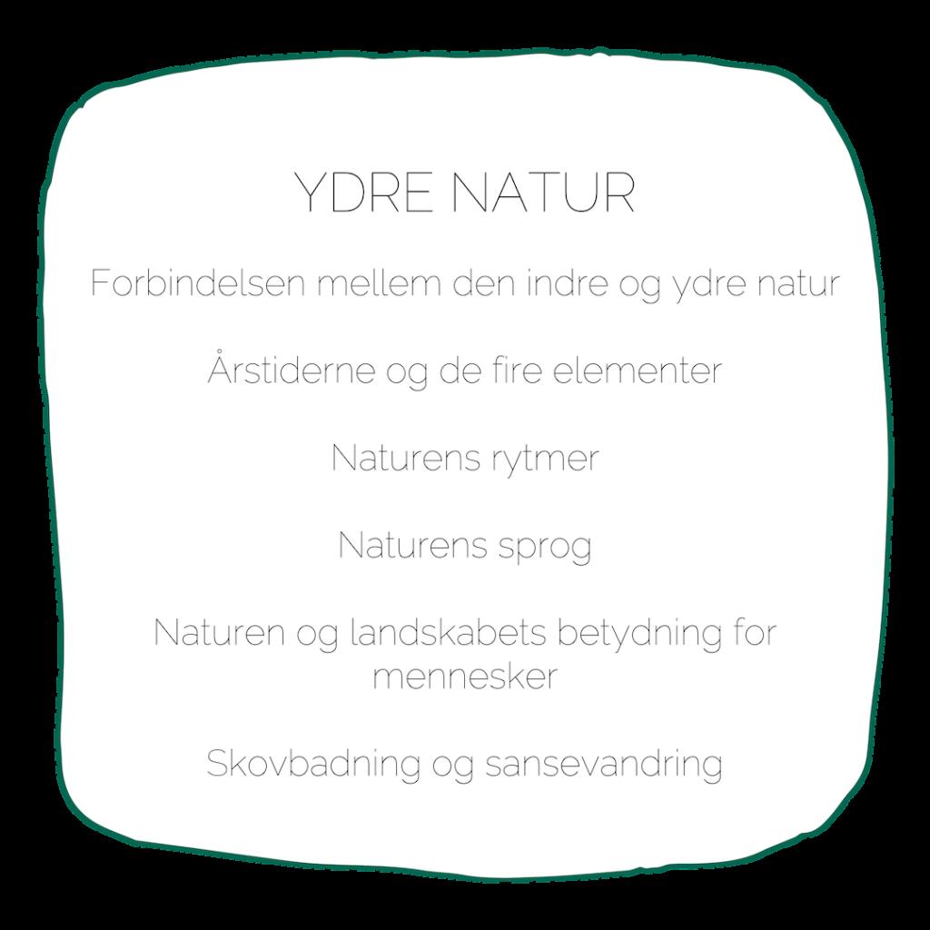 Uddannelsen i naturterapeutisk mindfulness ydre natur