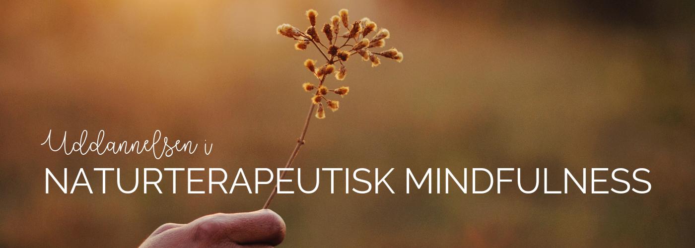 Uddannelsen i naturterapeutisk mindfulness 3
