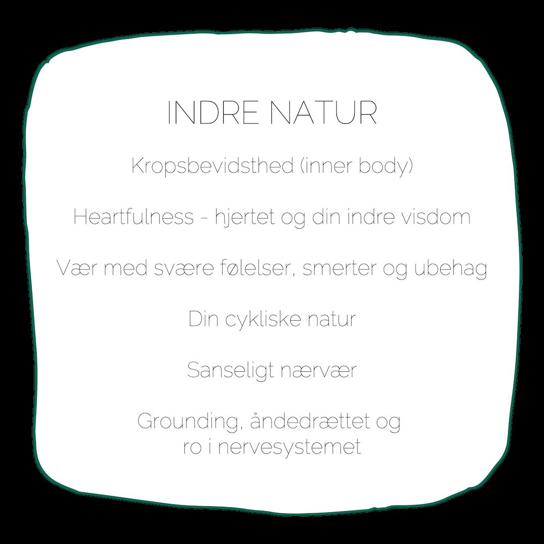 Uddannelsen i naturterapeutisk mindfulness indre natur